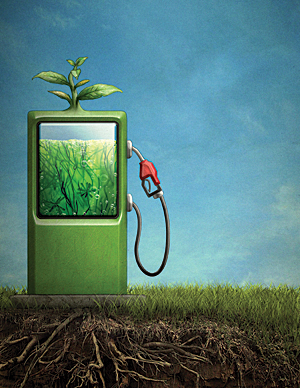 biofuels � more problem than solution environet solutions
